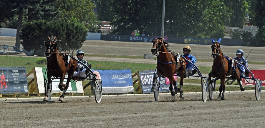 TRABER DERBY Vorlauf 1 IDS BOKO with Laurel Park